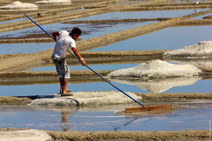 Paludier récolte le gros sel dans marais salants de Guérande